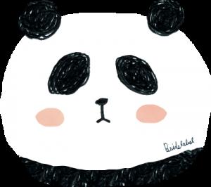 4723-タケイパンダ顔