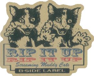 4680-ヨシダRIP双子ネコ